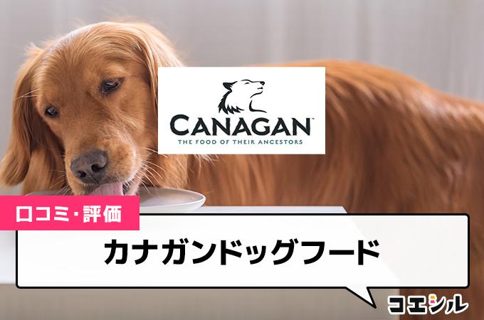 カナガンドッグフードの口コミと評判