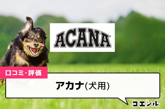 アカナ(犬用)の口コミと評判