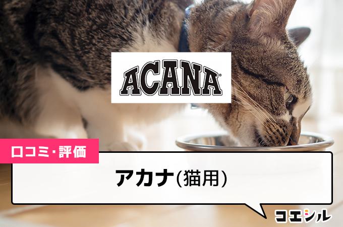 アカナ(猫用)の口コミと評判